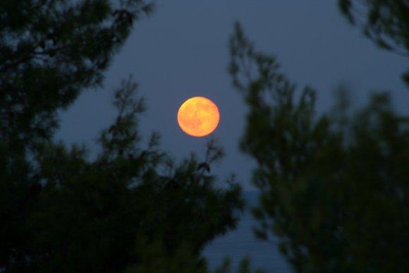 Vollmond Lampion Nachthimmel kostenlose Bilder downloaden